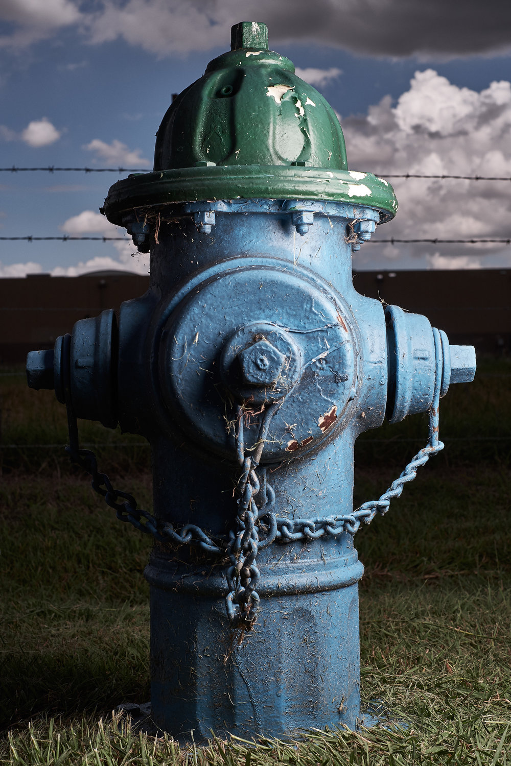 Hydrant Portrait #46