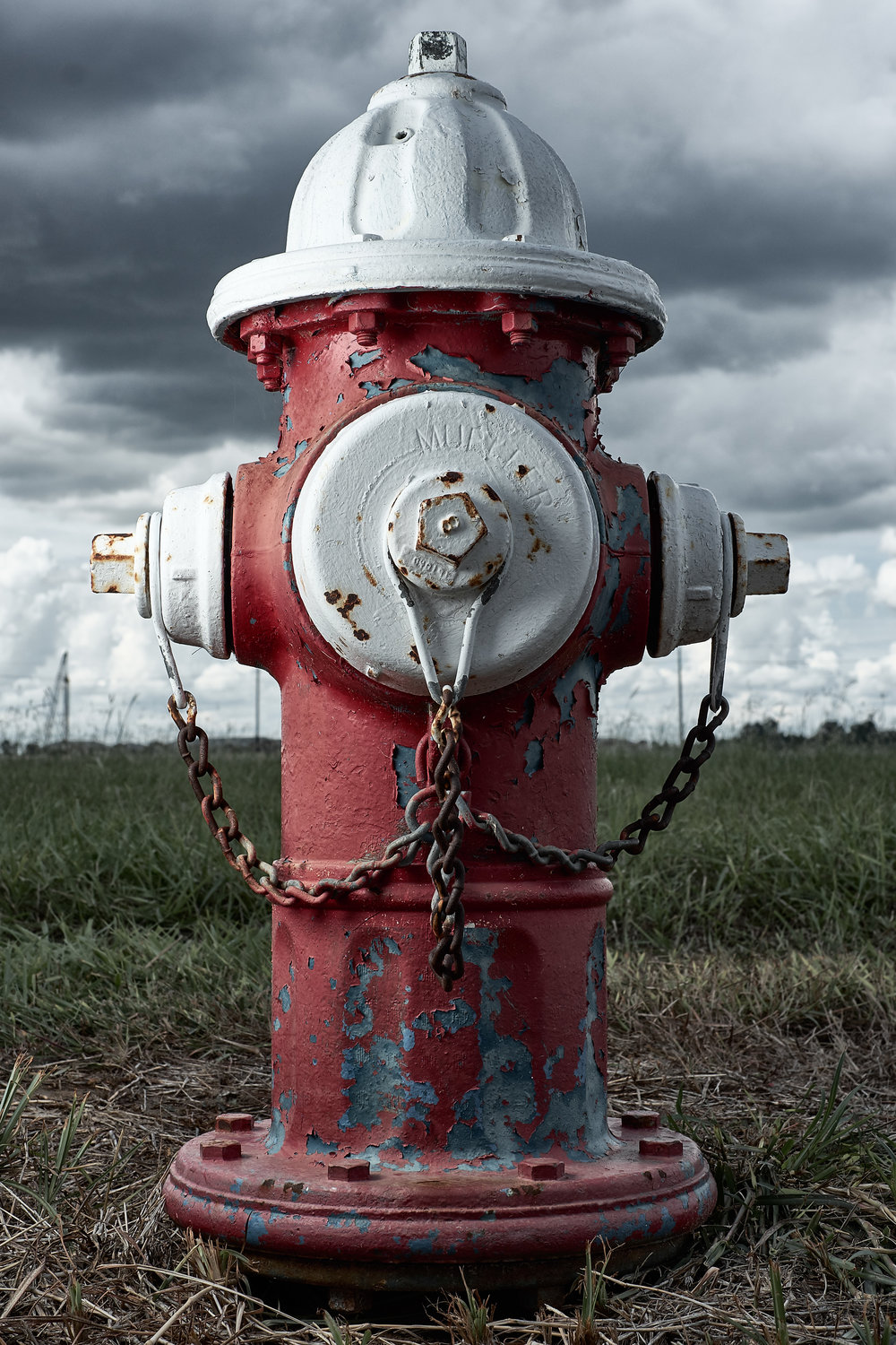Hydrant Portrait #47