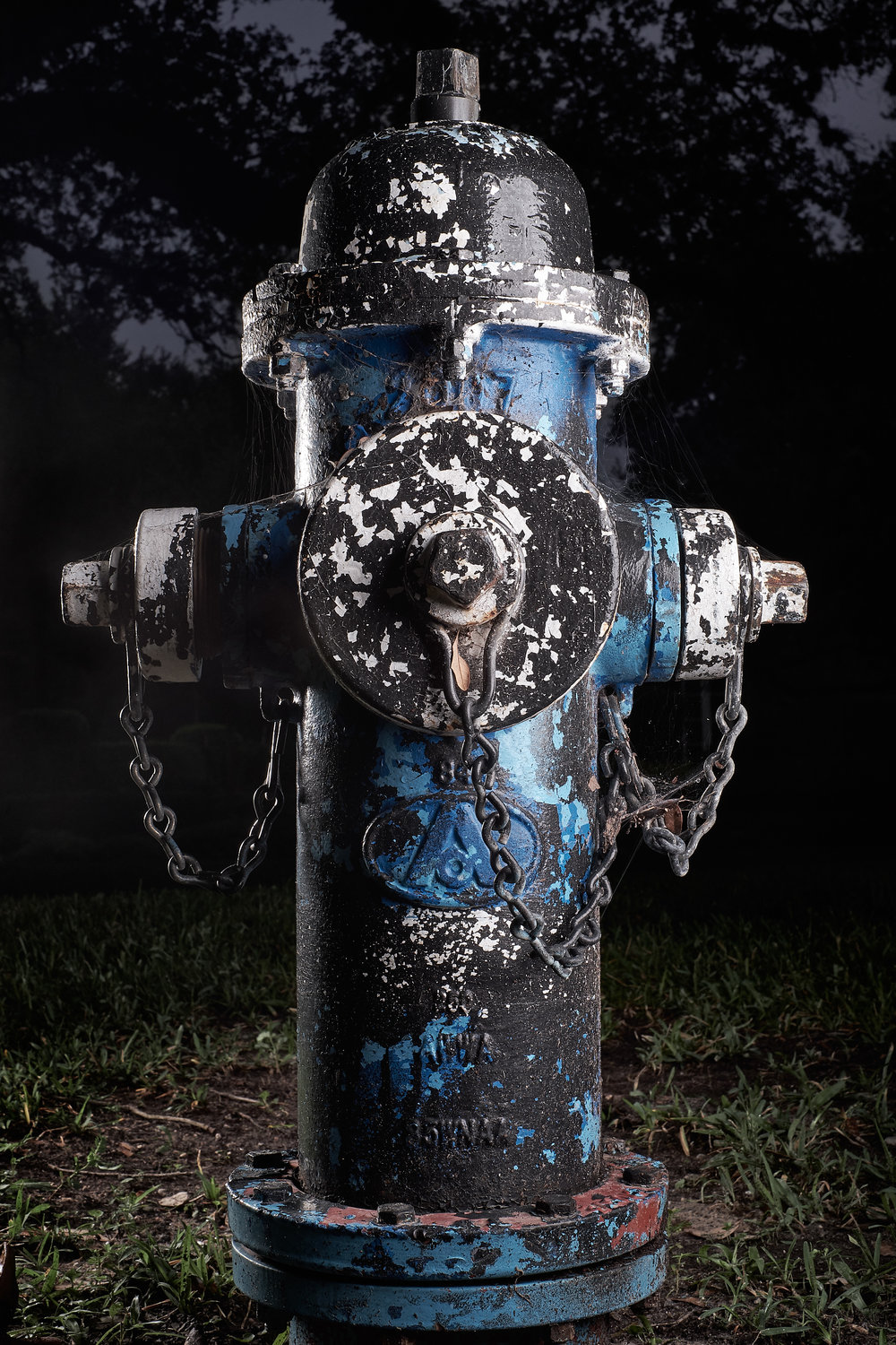 Hydrant Portrait #57