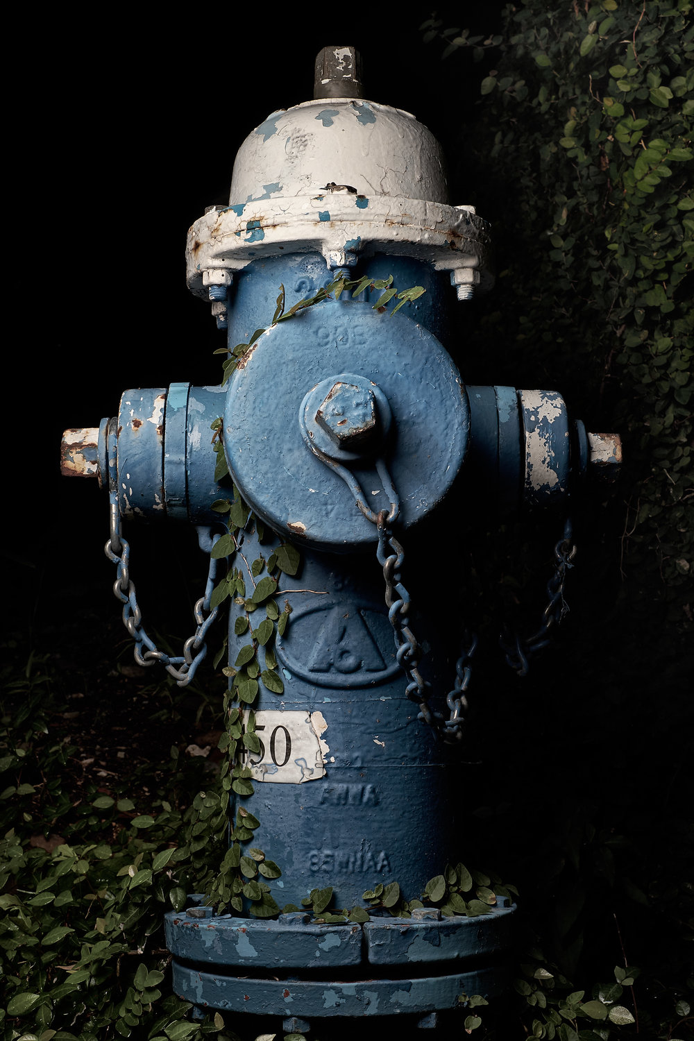 Hydrant Portrait #64