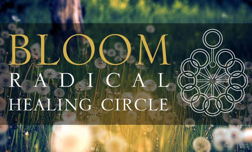 Steven Budden - Bloom Radical Healing Circle