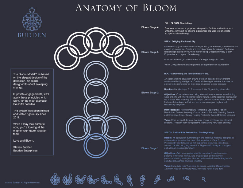 bloom-consulting-model.jpg