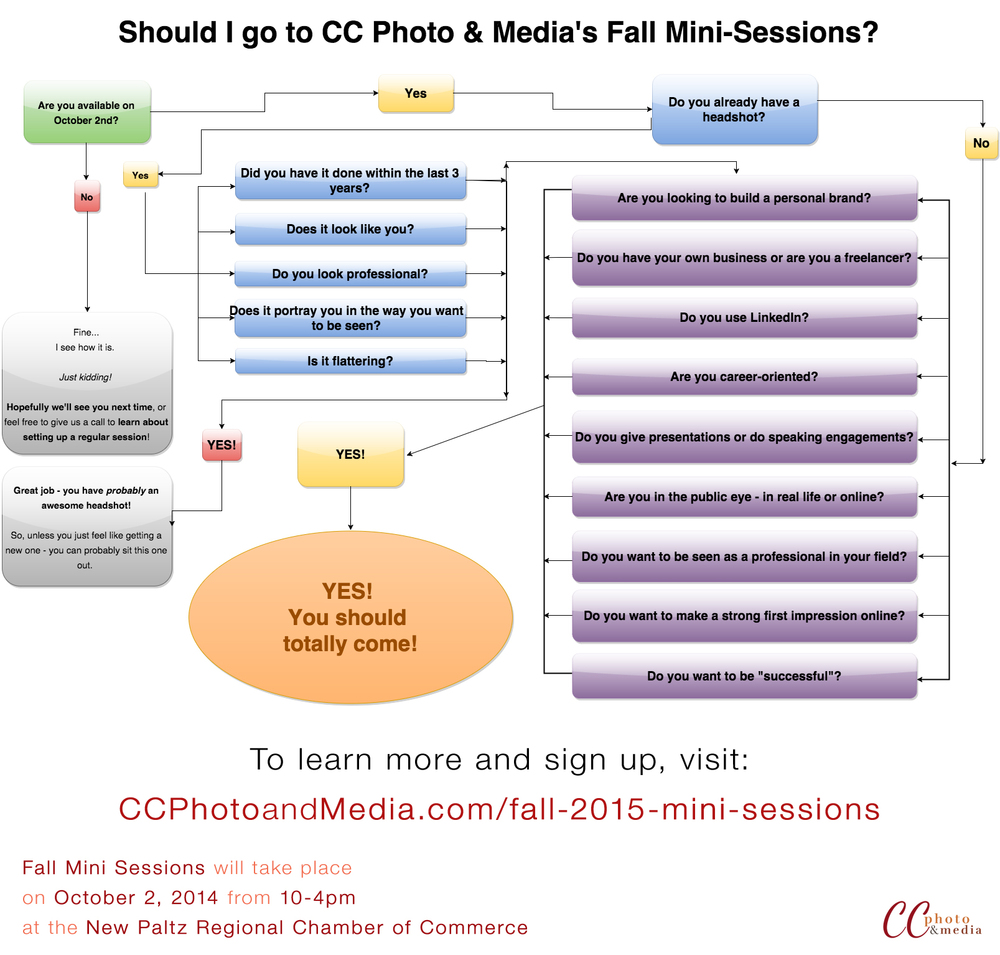 Infographic/Flow Chart