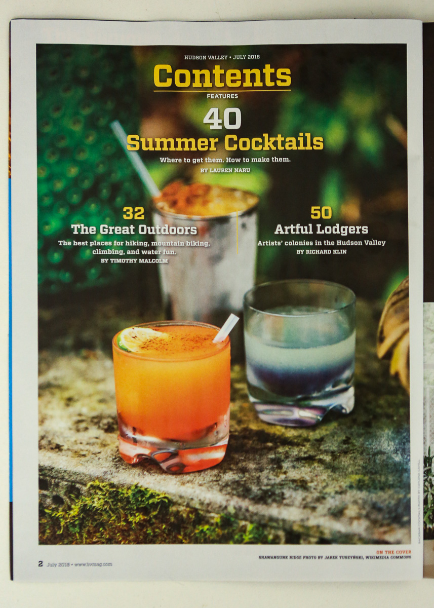 Cocktails at Backbar in Hudson, NY, for Hudson Valley Magazine, featured on Table of Contents page