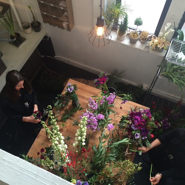 Gardenia Organic studio