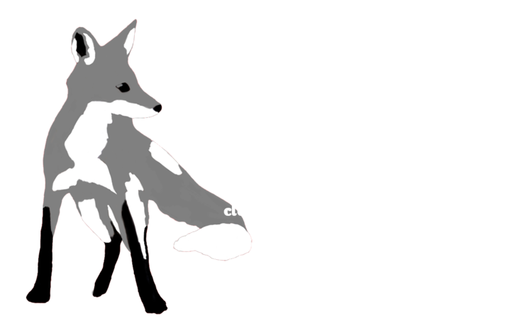 Lucidity Photography