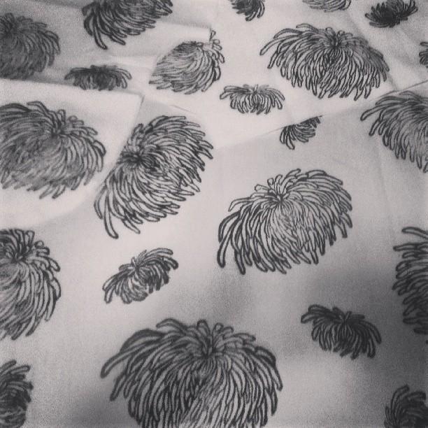 #handprinting #dahlias