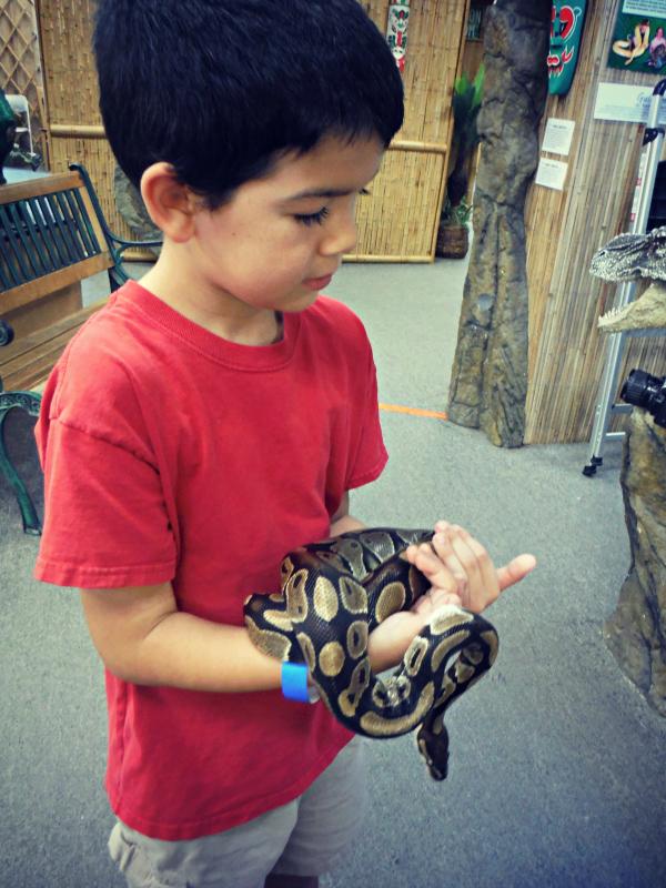 Reptile Zoo (6).JPG