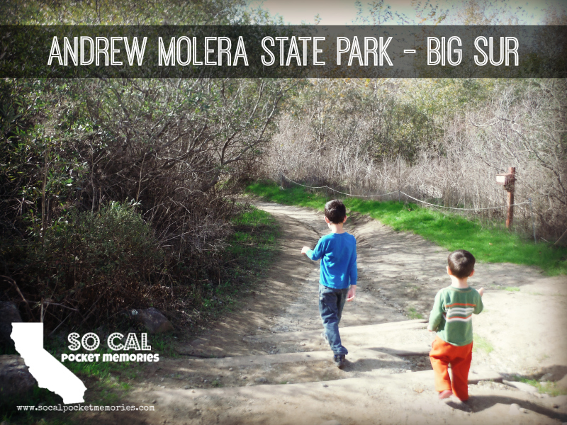 Andrew Molera State Park (1).JPG