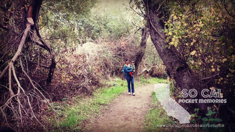 Andrew Molera State Park (7).jpg