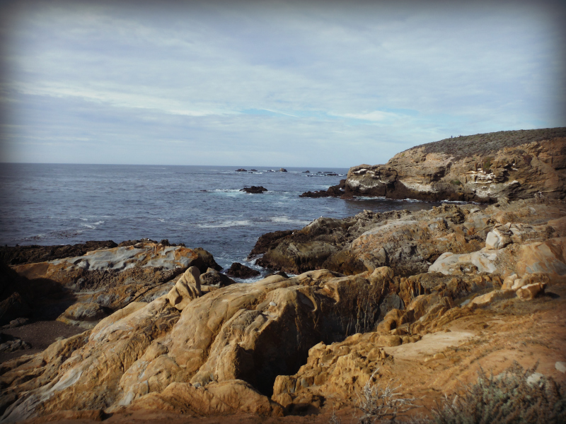 Point Lobos Big Sur (2).JPG