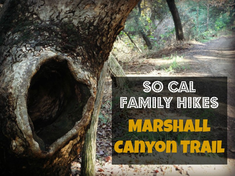Go hiking at Marshall Canyon Trail in La Verne