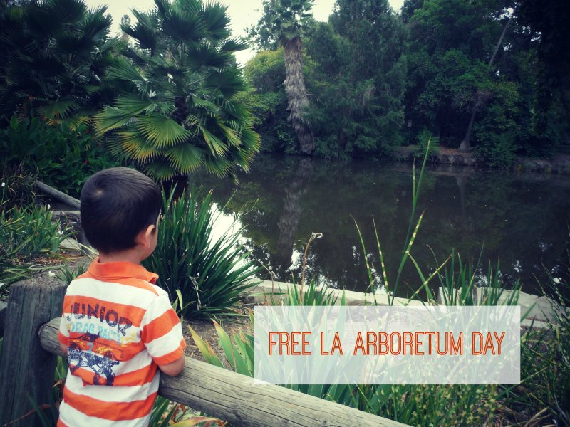Free Day at LA Arboretum - Third Tuesday of the Month
