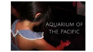 Image result for aquarium of the pacific autism night