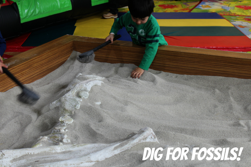 Dig for Fossils at West Covina Mall
