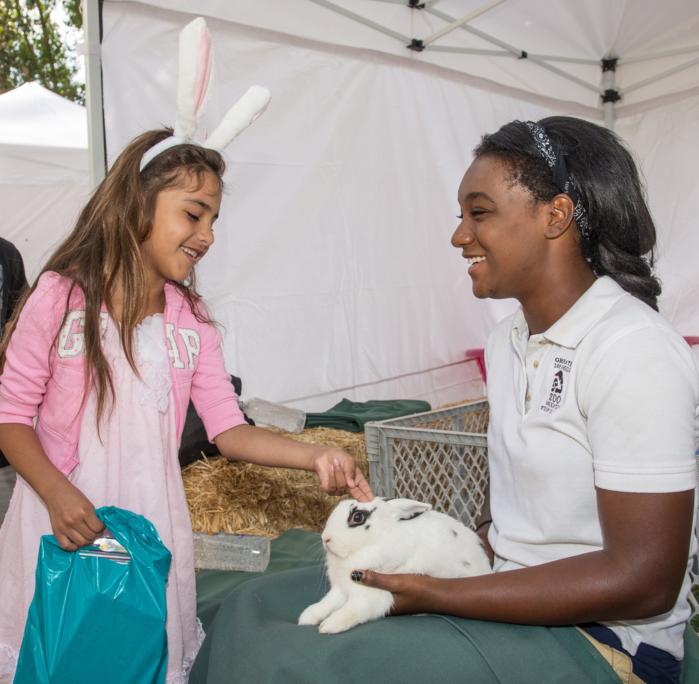 Youngsters enjoy the opportunity to pet a bunny rabbit at the Los Angeles Zoo's   BIG BUNNY SPRING FLING   PHOTO CREDIT:  Jamie Pham