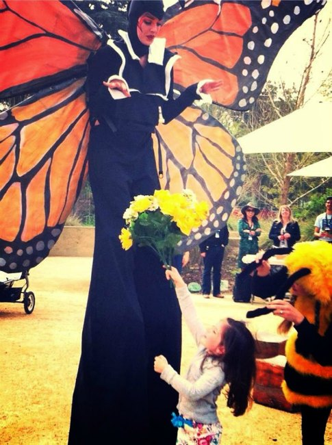 Natural History Museum Pollinators