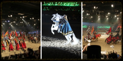 The beginning of the tournament, such a spectacle of colors amongst the talented performers and horses.