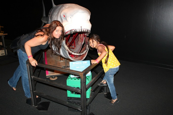 The 20 foot Mechanical Shark used on many of Myth busting sessions is also here on display.