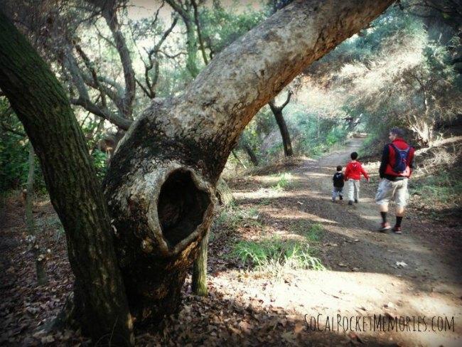 Marshall Canyon Hiking