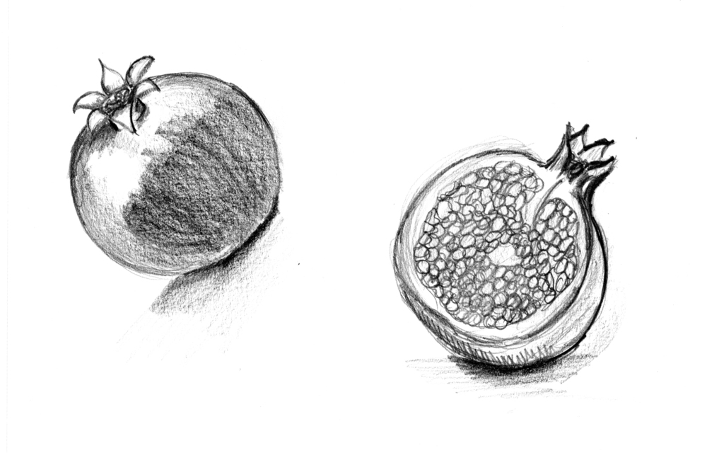 granada ilustration angie.jpg