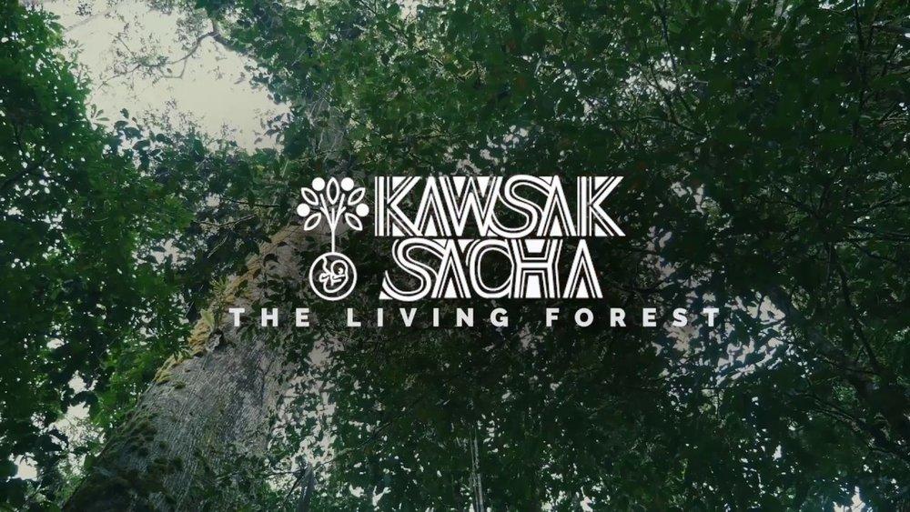 kawsak sacha