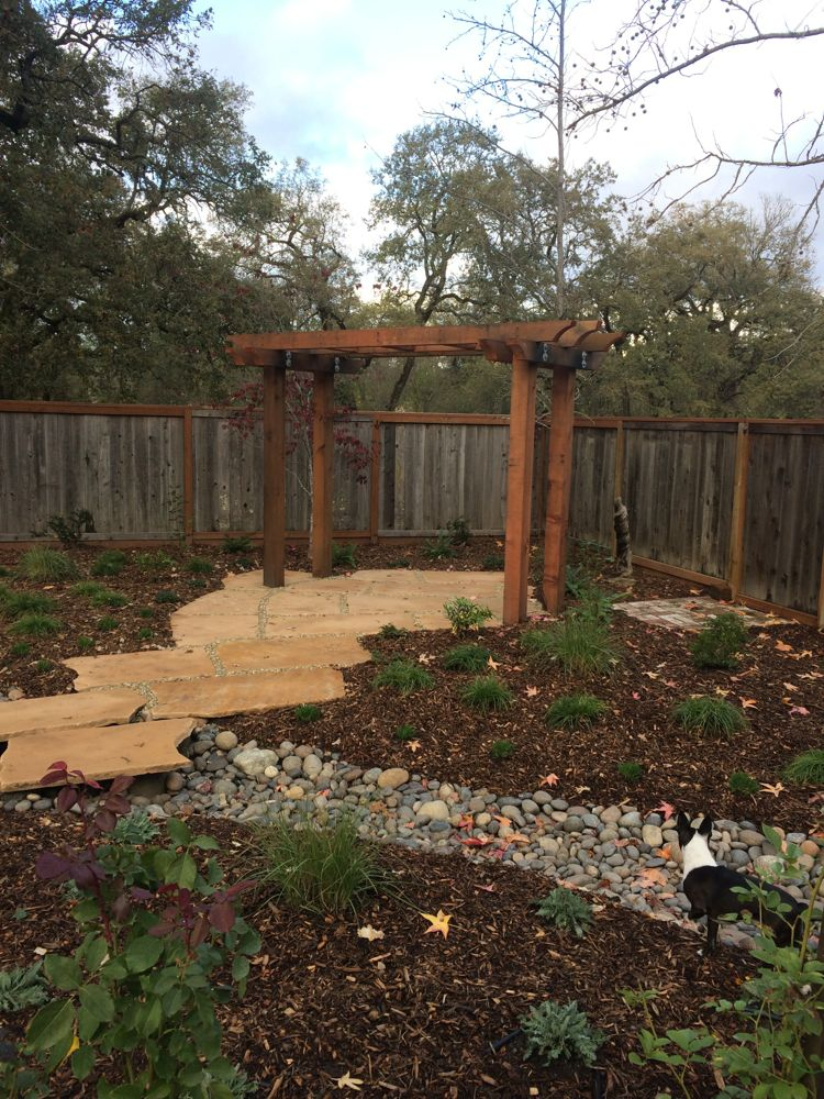 A bench will go beneath this pergola, looking back at the labyrinth in the opposite corner of the now lush yard.