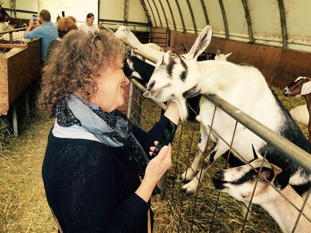 Making new friends ~ photo Rosemarie Pierre