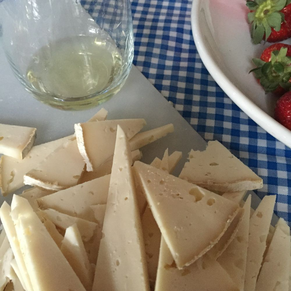 Goat cheese and Italian wine tasting!