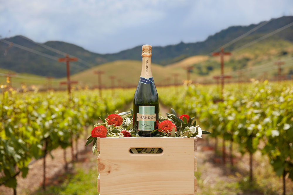 CHANDON-EXTR-VINEYARD-BOTTLES-35_WEB-READY.jpg