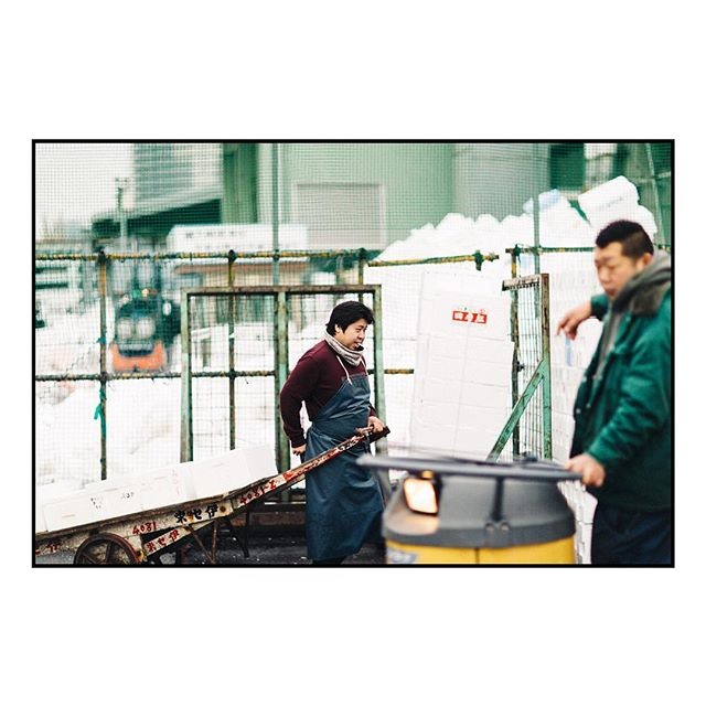 Tokyo. February 28, 2016. [26487] ⠀ ⠀ Outtake from last year's story on  Tsukiji, the world's largest fish market, published on @eater alongside Sarah Baird's beautiful words. Link in Story. #tsukijifishmarket