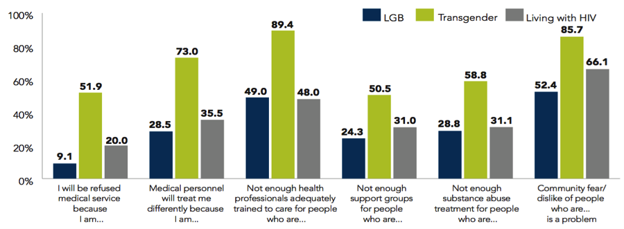 Figure 1. Fears and concerns about accessing health care (Tillery, 2010)