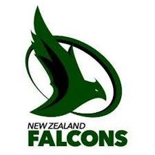 Falcons Logo.png