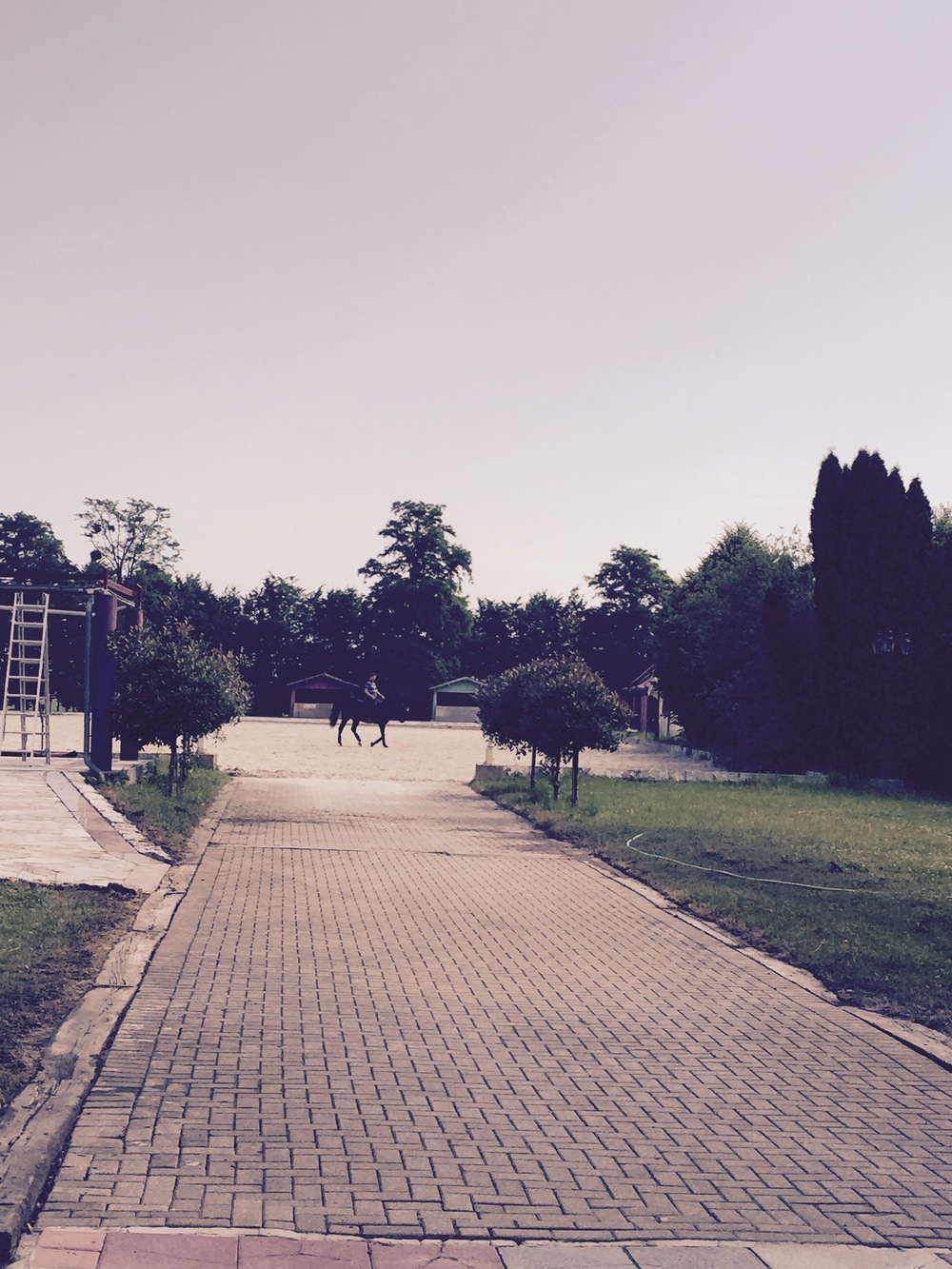 grounds.jpg