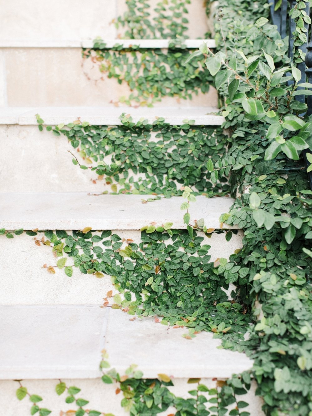 Rhianna_Mercier_Photography_Professional_Seccond_shooter_Ivy_on_stairs_Kletner_Ranch_Santa Barbara_CA