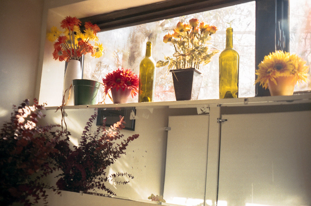 Bathroom florals