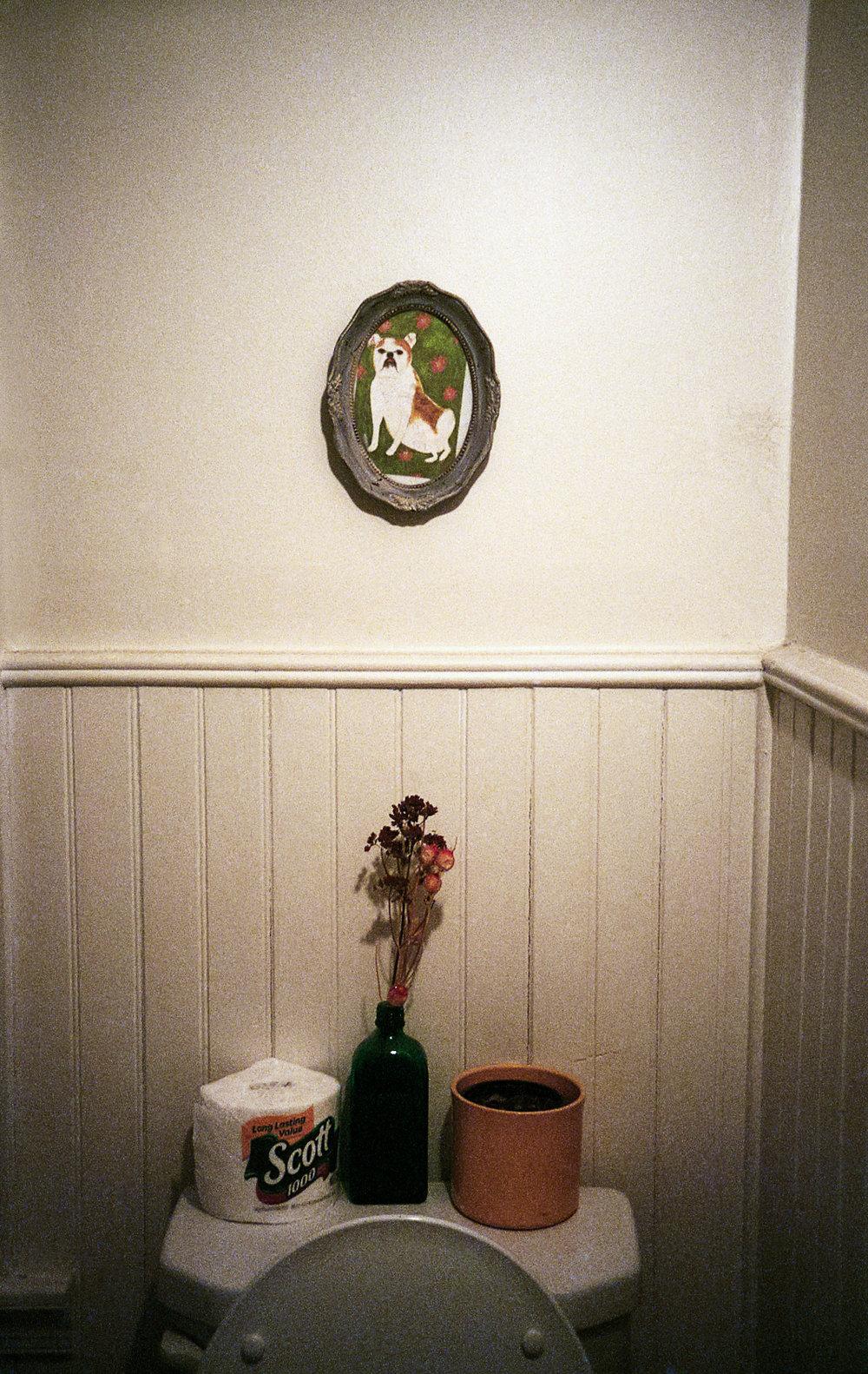 Toilet vignette