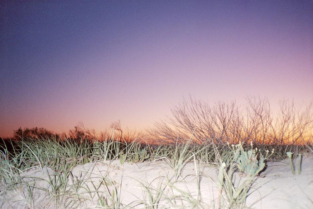 Semaphore Beach, Australia, January 2019, 35mm color film photograph