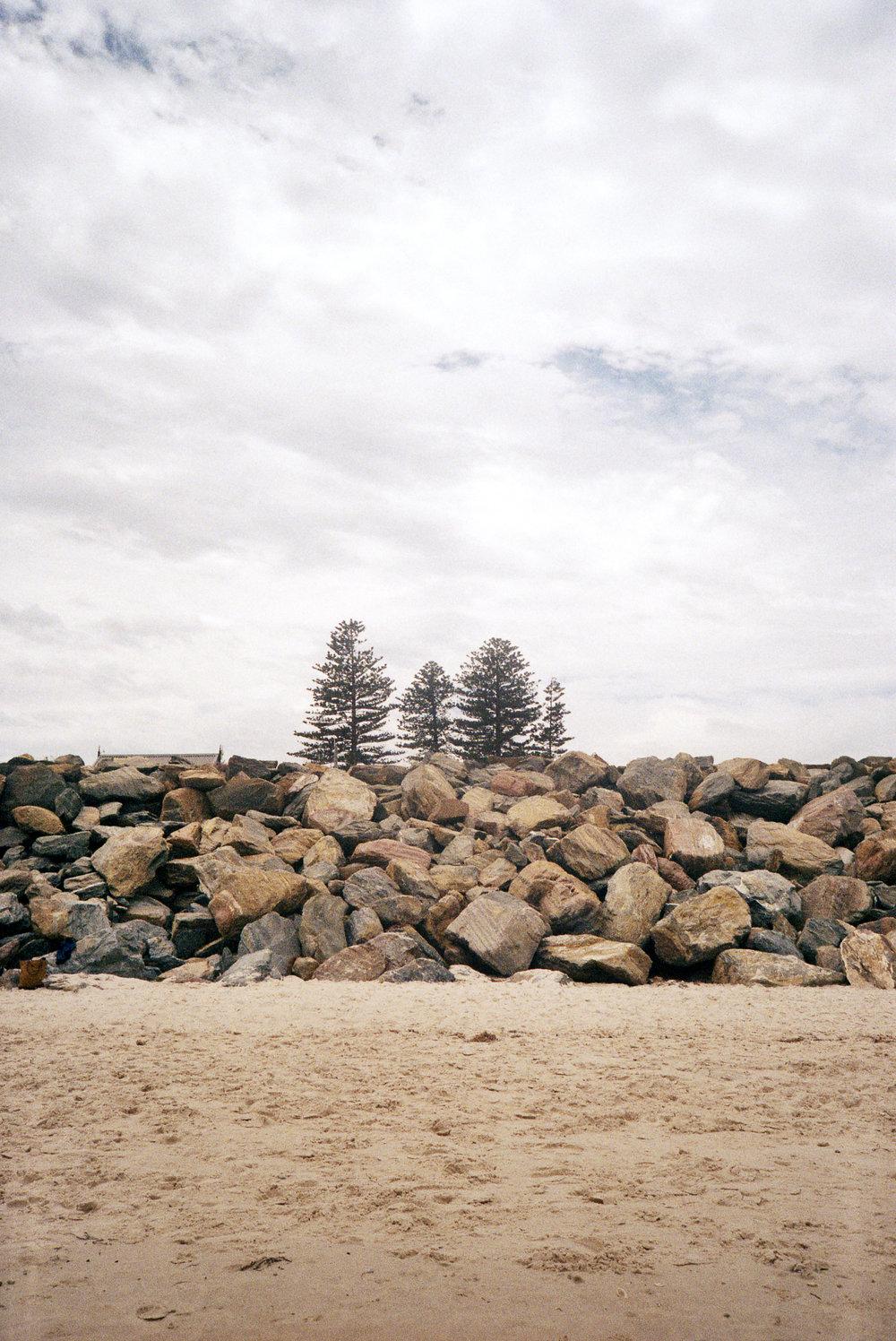 Australia, January 2019, 35mm color film photograph