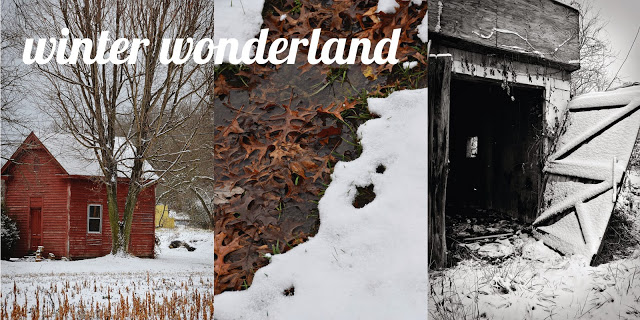 winter+title.jpg