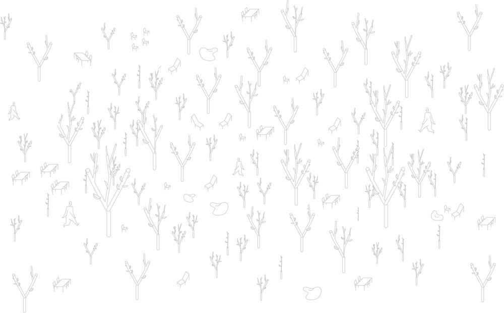 THUMBNAILS GREYSCALE - woods.jpg