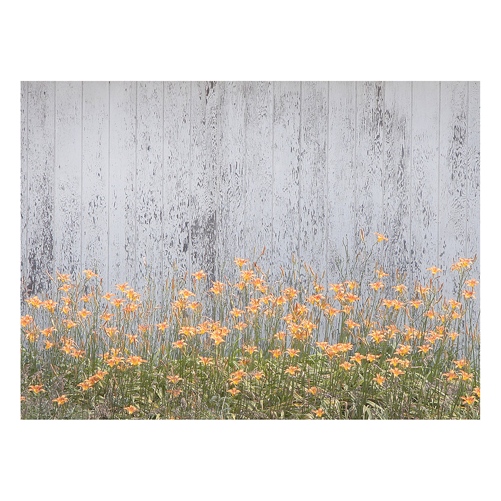 orange+flowers+9x12WEB.jpg