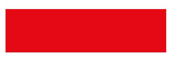 netflix logo ussr.png