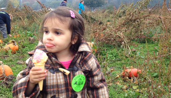 pumpkin patch 2 2013.png