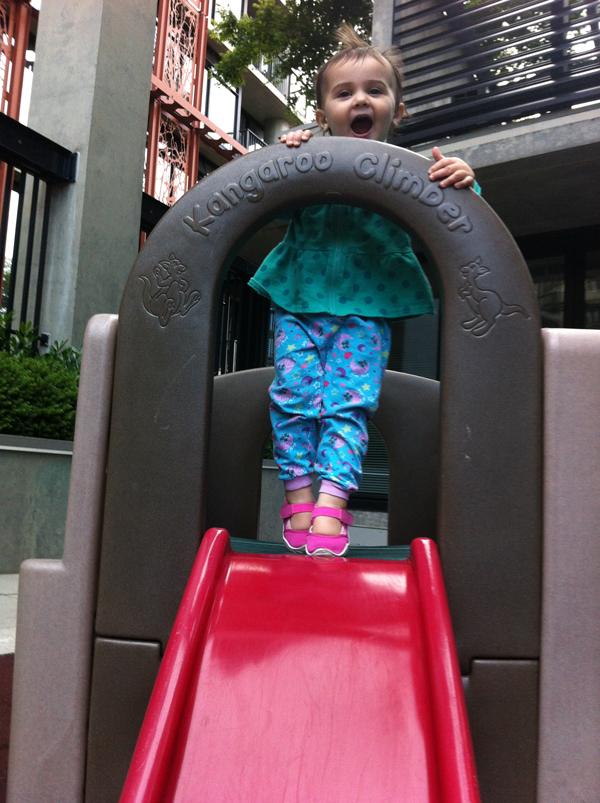 slide monkey.JPG