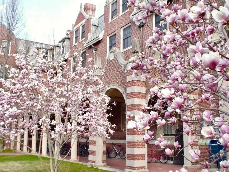 Wellesley photo.jpg