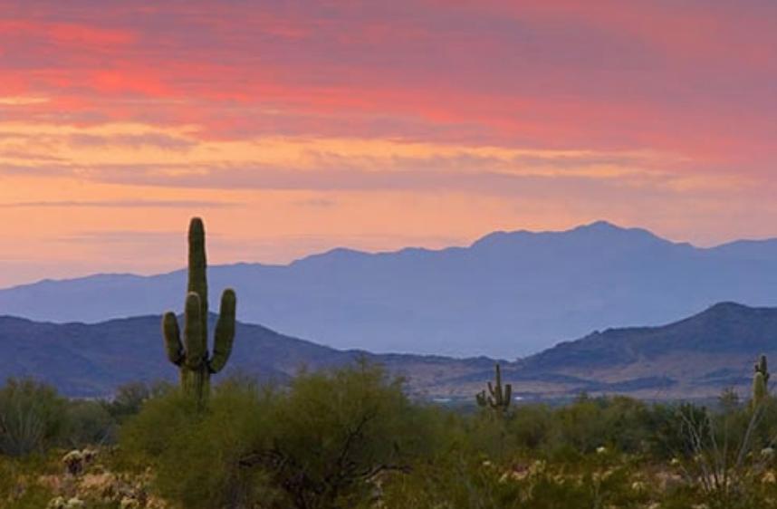 Arizona Landscape.png