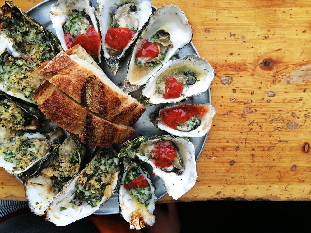kayak_oysters.jpg