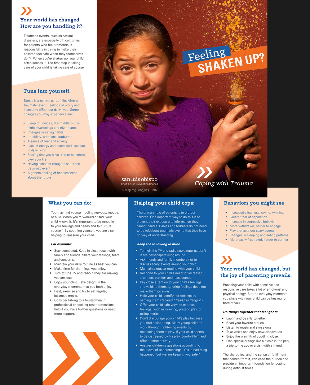 Feeling Shaken Up Brochure