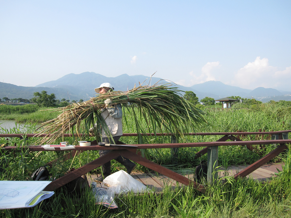 MVrij_TaiwanFOB_oogst.jpg